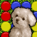 Cute Puppy match 3 game